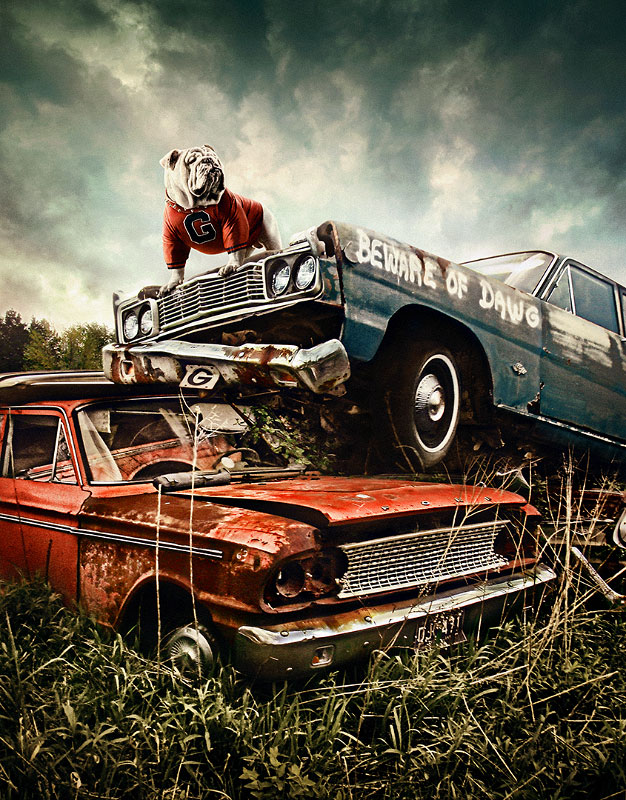 This image was created from pieces of 10 images. The idea brought back the classic theme of the Junkyard Dawgs from some of UGA's earlier great defenses. Classic being the key word we wanted to find classic junkyard cars to match the theme, and utilize Uga VII, the current UGA mascot, as our hero.