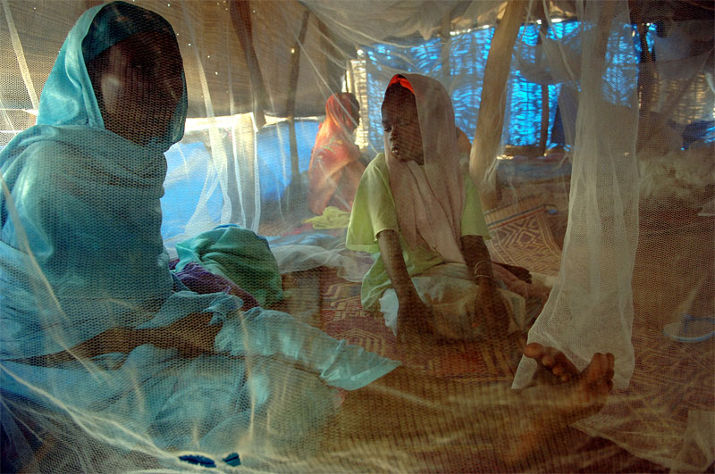 An Internally displaced mother and daughter sit beneath a mosquito net while being treated for malnutrition at the Kalma camp for IDPs in Nyala, South darfur, Sudan, November 2005.  As fighting continues across darfur between Arab nomads backed by government forces and ethnic Africans of the Fur and Zargawa tribes, hundreds of thousands of internally displaced civilians continue to flood the camps.