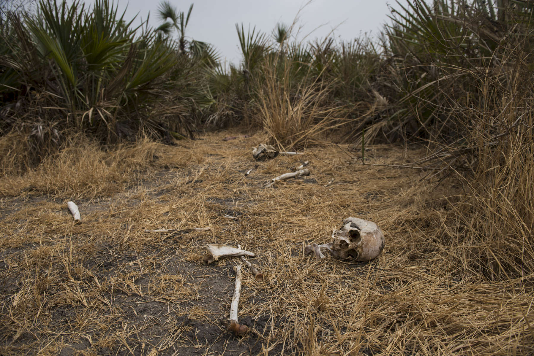 Skeletons and bones litter the ground at the site of a mass grave, where the corpses of roughly fifty men were dumped after soffocating inside of a container at the hands of the South Sudanese Government in Leer, in Unity State, South Sudan, March 18, 2016.  When fighting raged throughout Leer in 2014 and 2015, most of the population fled, leaving civilians unable to harvest crops,and many struggling to find food. The city of Leer, once a bustling city and headquarters of opposition leader Riek Marchar, is now a ghost town reduced to rubble and the carcases of buildings. (Credit: Lynsey Addario for Time Magazine)