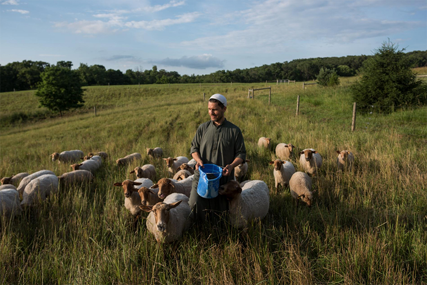 Imam Jamil Bastress is the prayer leader and shepherd at the Farm of Peace, a spiritual retreat in Pennsylvania. When the time comes, he's also the halal butcher. The goal here, he says, is to love the Earth and each other. Bastress is a convert to Islam, as are most members of this small Sufi community.
