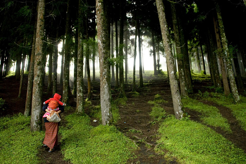 A woman walks through a forest to her relative's house in Rethung Gonpa village outside of Trashigang, in east Bhutan, August 8, 2007.  Nearly 75% of Bhutan is covered by protected national forest as part of the government's plan to promote the environment as one of the pillars of Gross National Happiness. Unlike most modern nations, who rely on Gross national Product as a measure of how well the country is doing by international standards, Bhutan relies on its philosophy of Gross National Happiness: sustainable development, environmental protection, cultural preservation, and good governance; Bhutan has tried to develop infrastructure without exploiting its natural resources (other than hydropower, sold to India as Bhutan's main source of foreign funds).