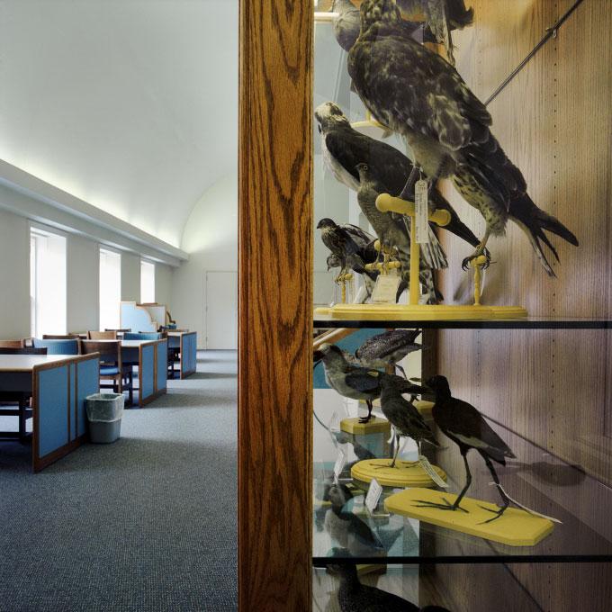 08-bird-house