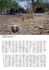 Asahi Weekly (Japan) - South Sudan Conflict 03