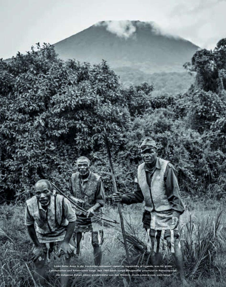 Lufthansa- Mountain Forrest in Uganda 03