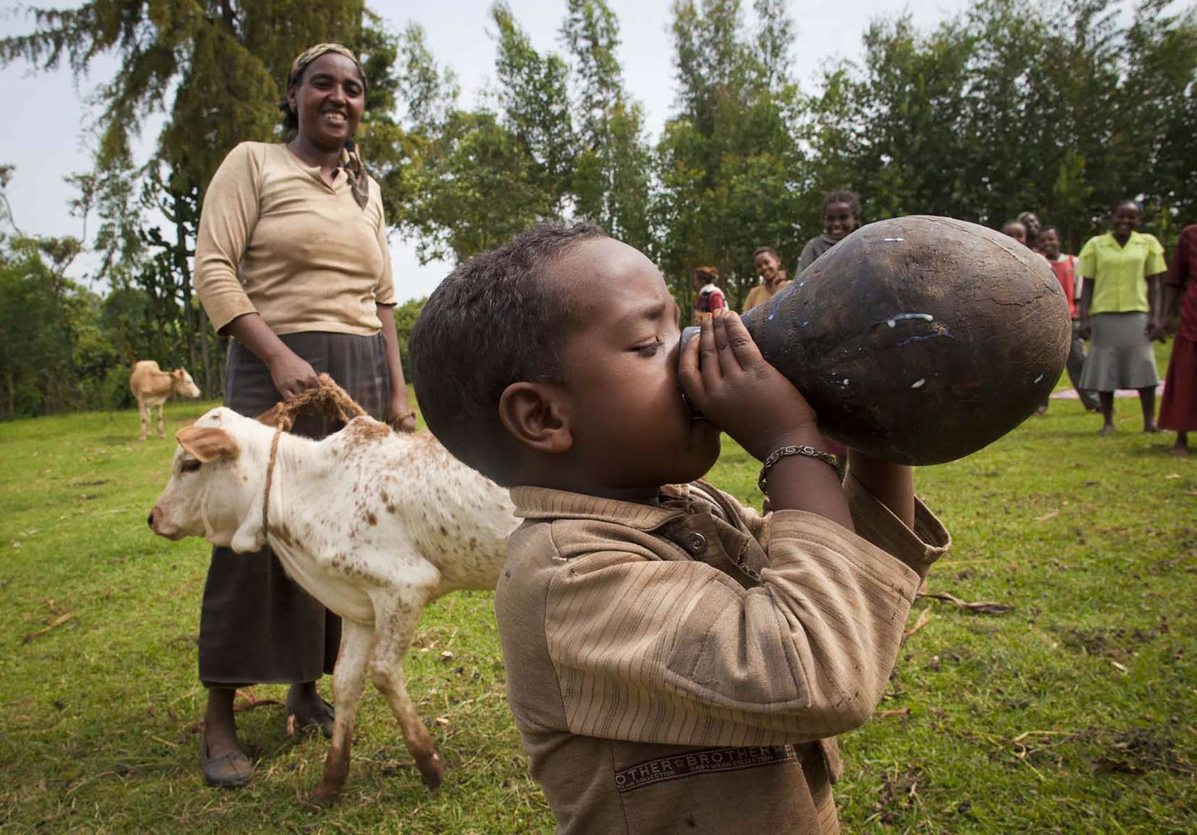A boy takes a big drink of milk coming from a cow given by Plan Internationl to his family in SNLPR region of Ethiopia July 8 2011. The donation improved nutrition and financial situation of the family.