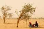 Sudanese children make their attempt to seek shelter from the scorching sun at Chad/Sudan border.