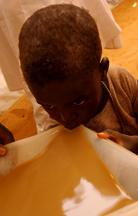 Sudanese boy tries to quench his thirst by drinking muddy water from a puddle at Kashuni Refugee camp. Especially young and elderly often fell ill and to their death due to malnutrition and no access to safe water.