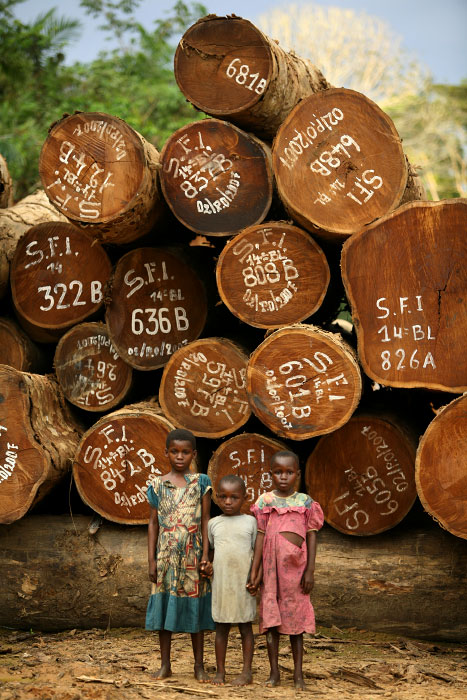Children of a logger by Afromosia, highly valued tropical hardwood, logged by Belgian-American company, waiting to be transported by Lomami River, tributary of Congo River, near the Village of Yafunga March 23, 2007. Logger makes 400 Congolese Franc, less than dollar per day.
