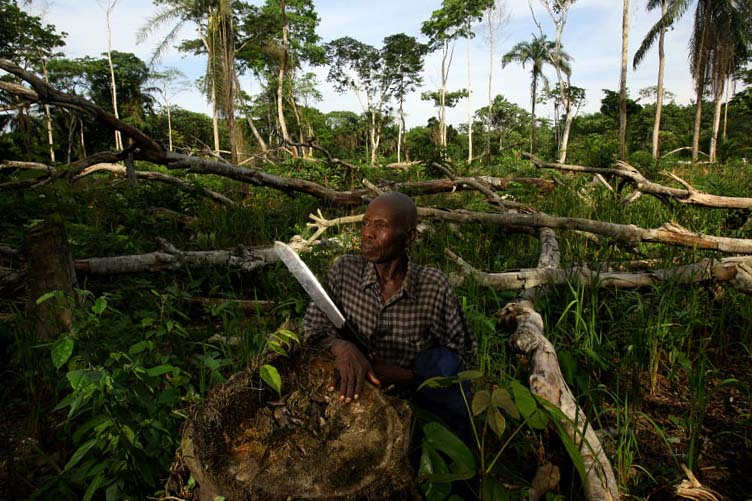 Joseph Mamango Mbula, chief of Yoko Forest Reserve, stands at illegally slashed and burnt field in Yoko National Reserve in the Orientale Province in the Democratic Republic of Congo March 25, 2007. Mbula and 3 other work under him were detained by other local authorities without charge because they tried to stop the slash and burn in the park.