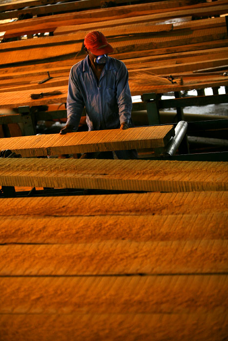 Afrormosia is being cut to order into hardwood floor at a sawmill in Kisangani, the capital of the Orientale Province March 26, 2007.
