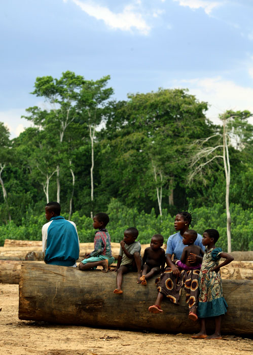 Logger and his family by Afromosia, highly valued tropical hardwood, logged by Belgium-American logging company, waiting to be transported by Lomami River, tributary of Congo River,  near the Village of Yafunga March 23, 2007. Loggers are paid 400 Congolese Franc, less than a dollar, per day.