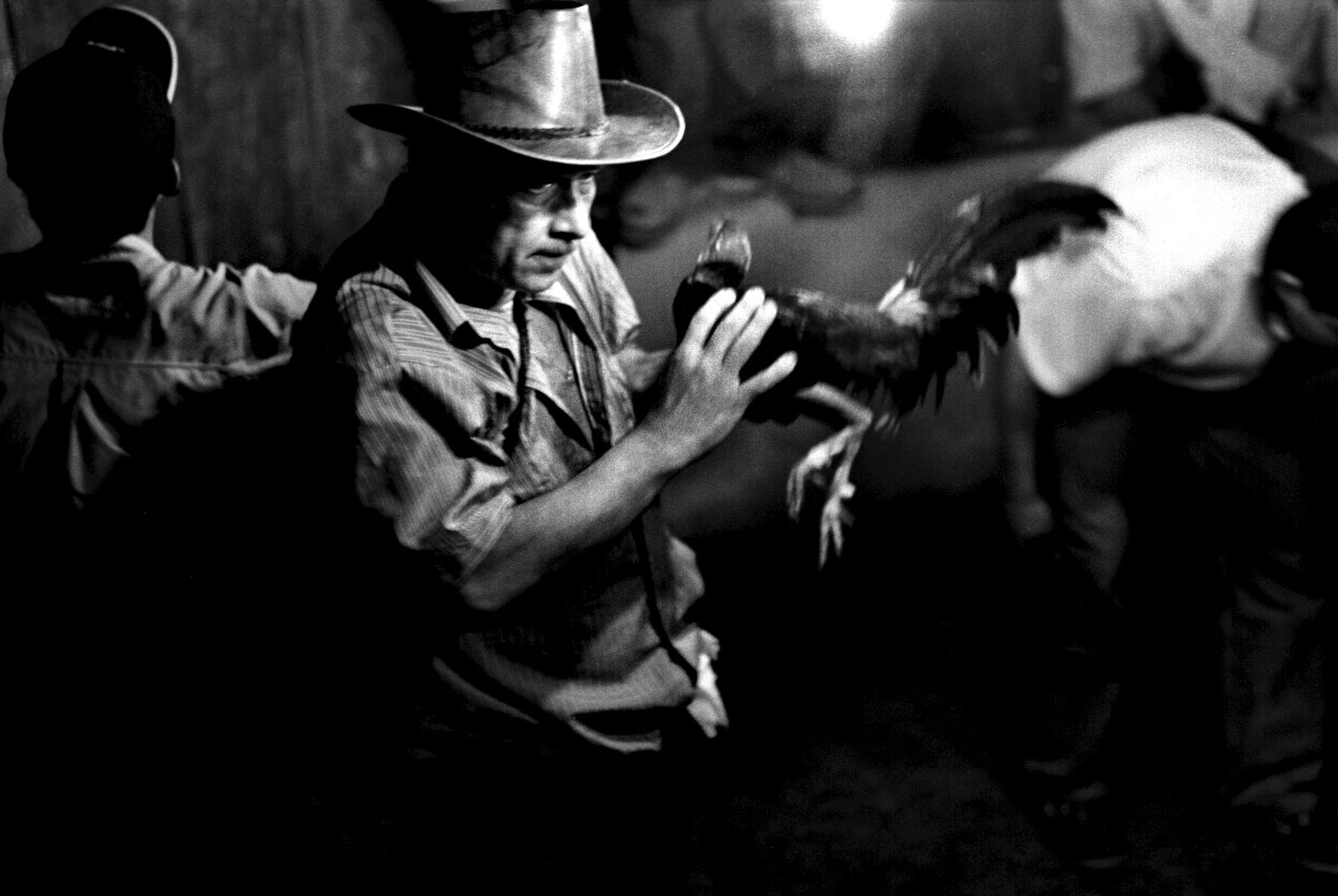 Cock fighter and his prized possession, Rio Caguan town, Southern Colombia 2001