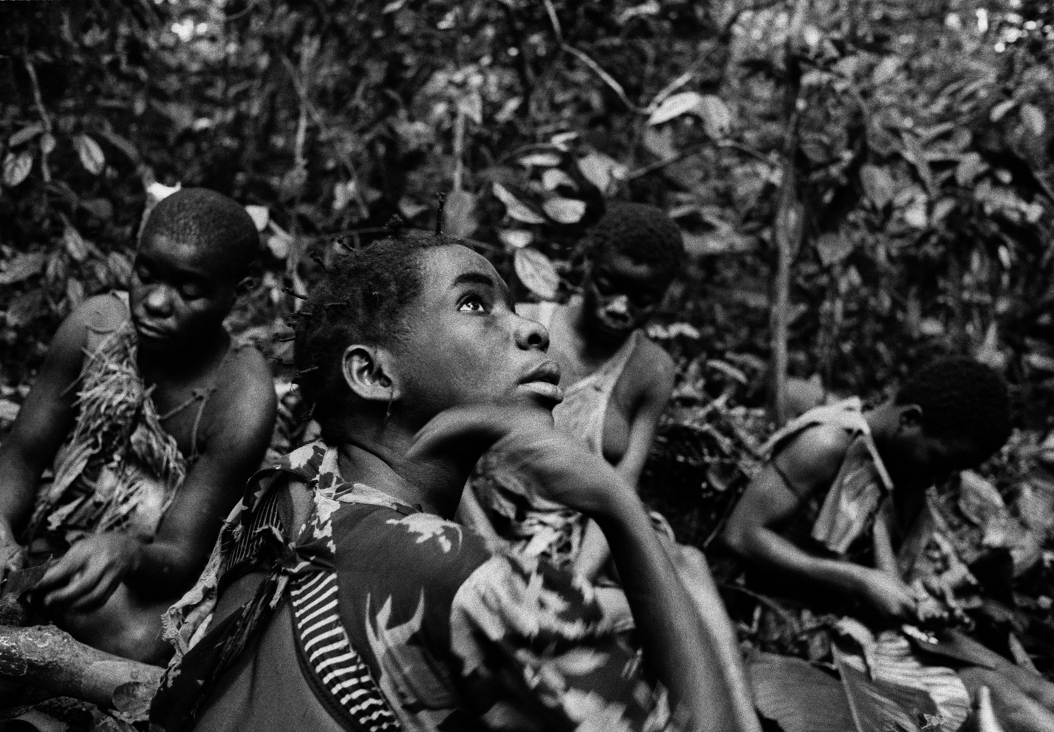 Pygmy girls deep in the equatorial forest collecting nuts and snails, DRCongo 2004