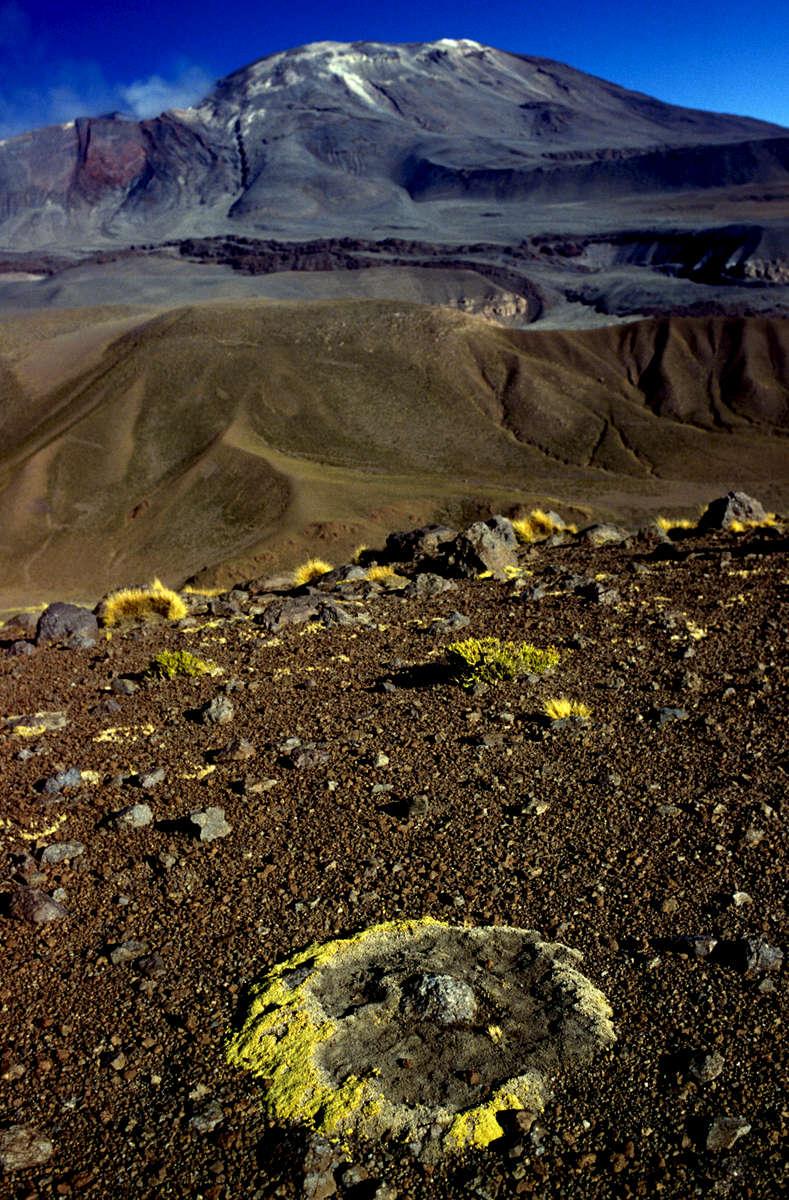 Atacama desert landscape, Chile