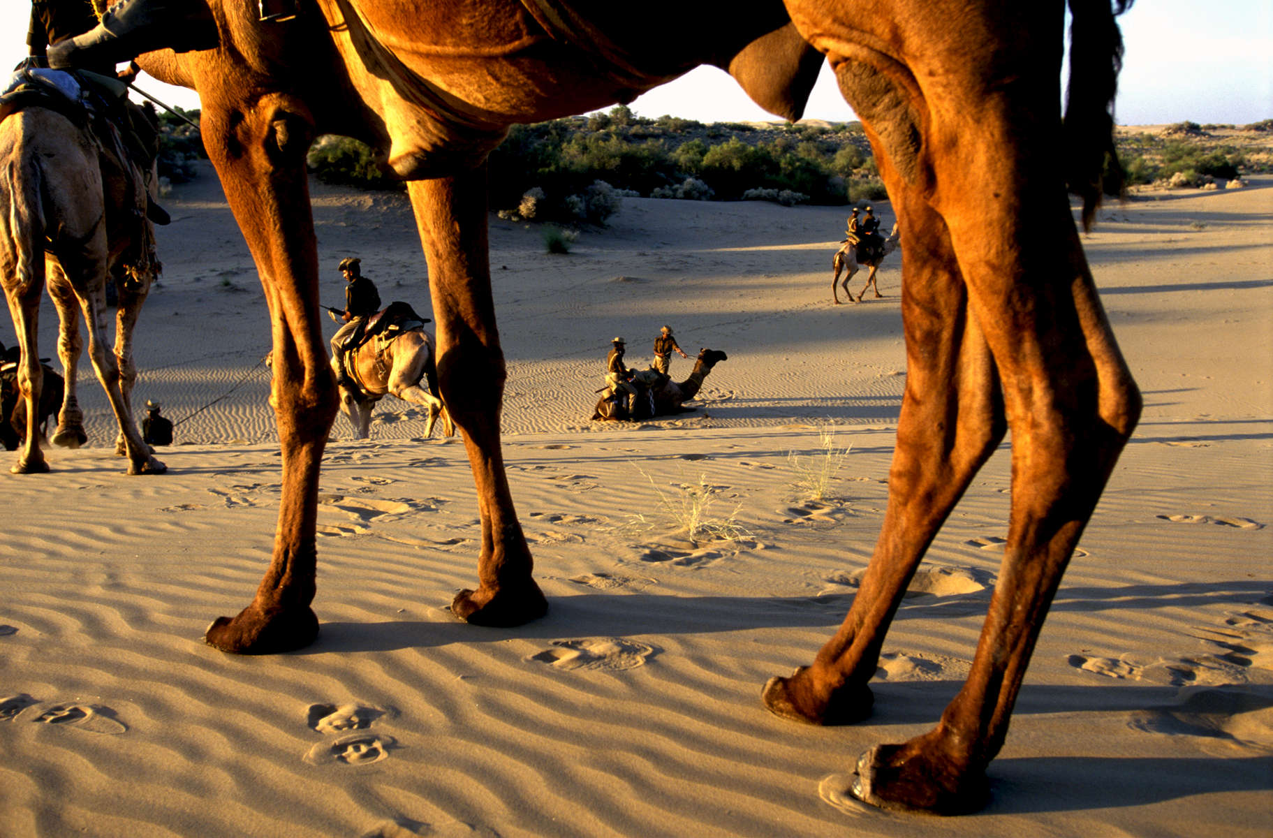 Mounted camel Border Security Force (BSF) patrol along the Indo-Pakistan Thar desert border. 1998