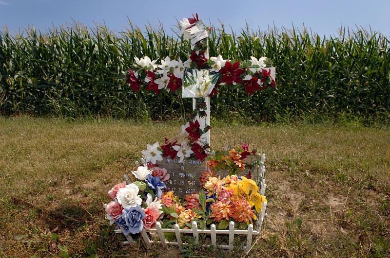 corn_grave-copy