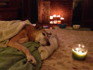 sparky_post_candle_copy