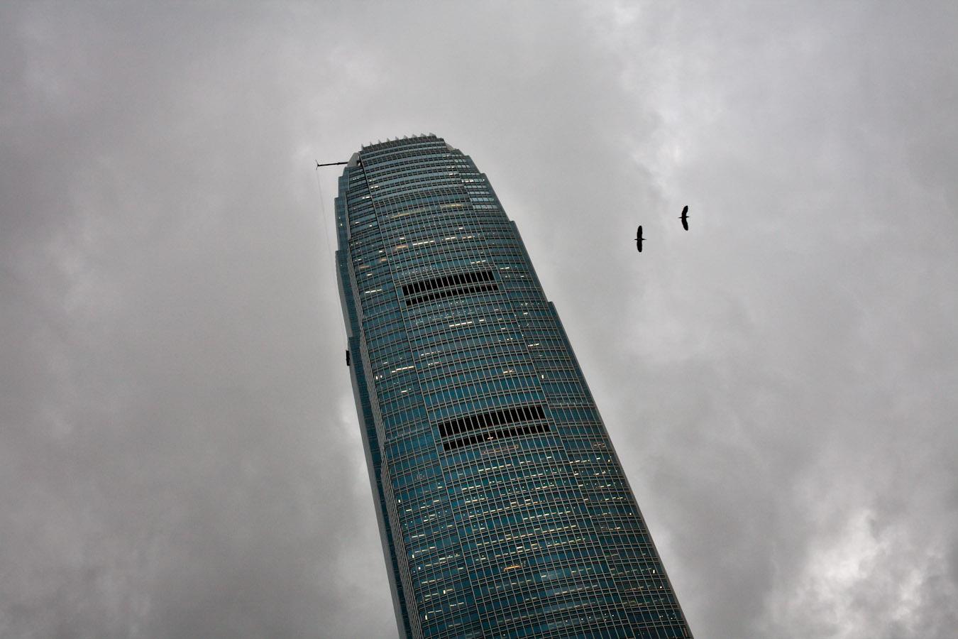 20110614_hongkong4_0811l-2w