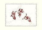 Watercolor, Illustration & Design