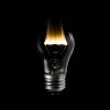 Still-Life-Bulb-Exposure-MW