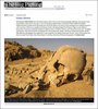 Green-Sahara-Tear-Sheet-Big-Picture-L