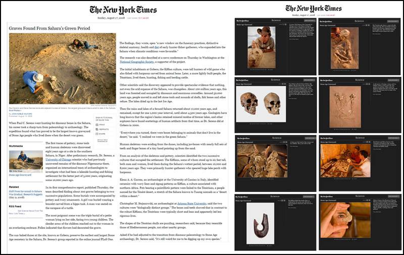 NY-Times-Green-Sahara-L---2016