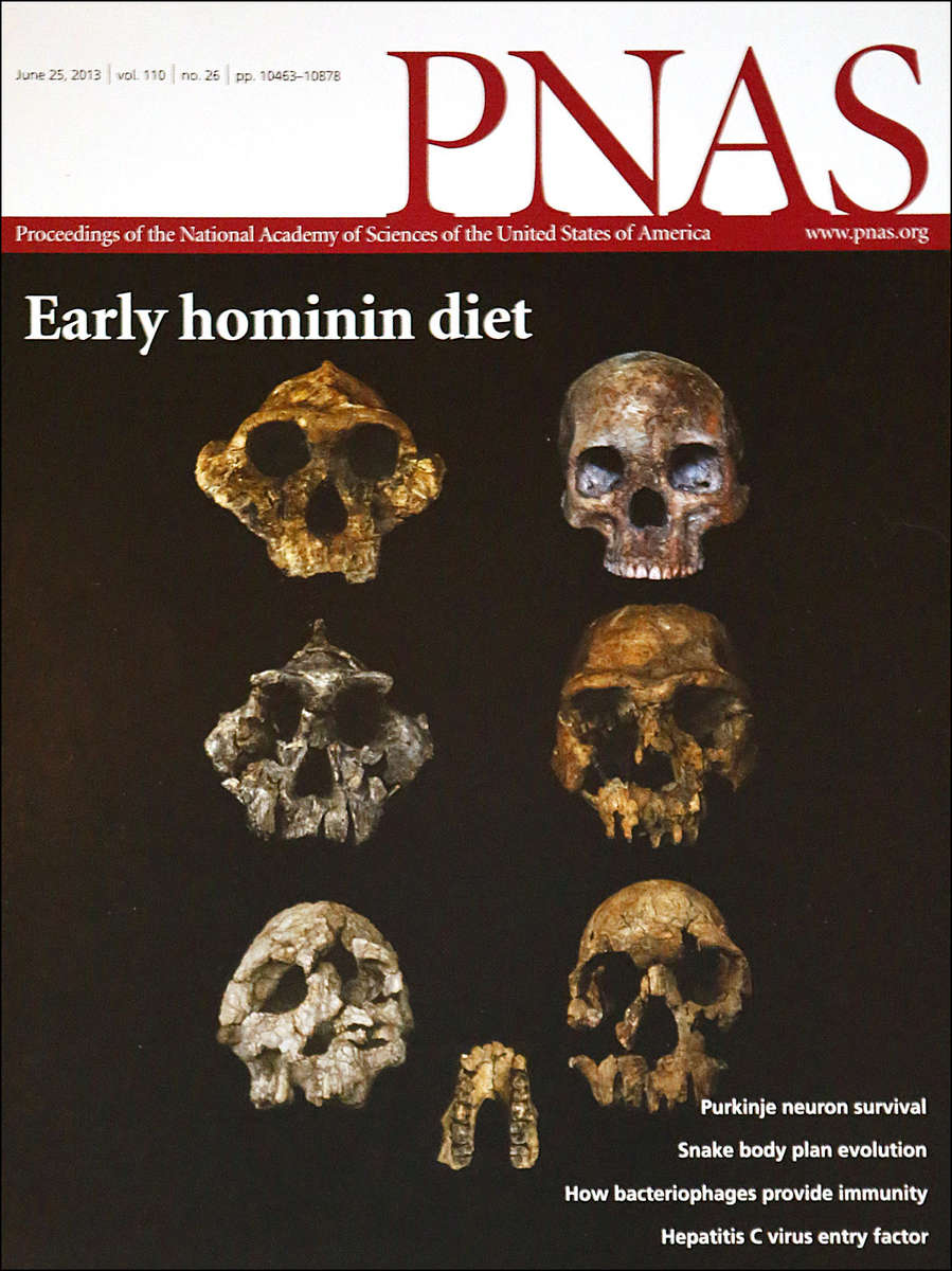 PNAS-Cover---Leakey-Skulls