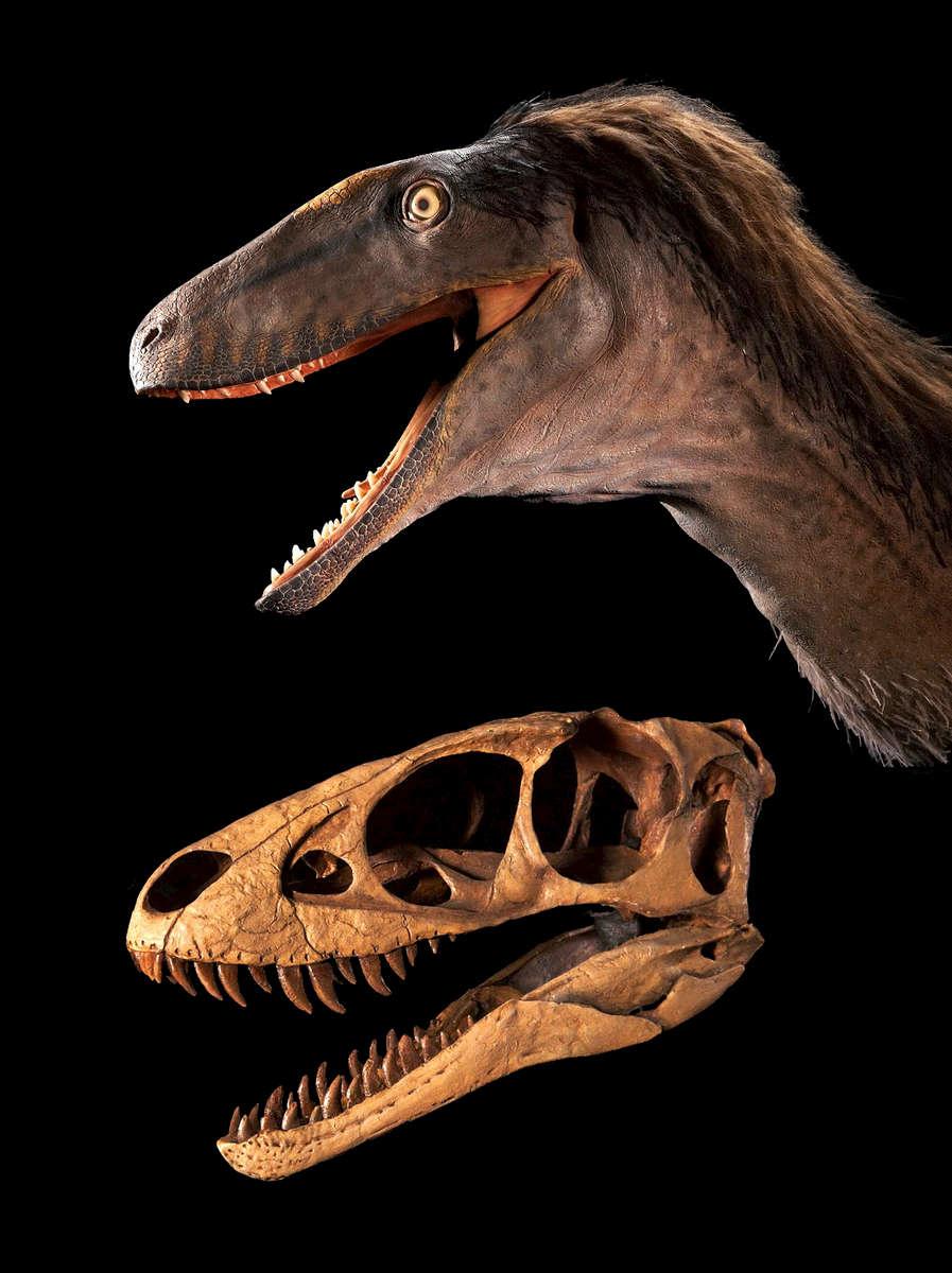 ST-Raptor-Rex-dinosaur---2016