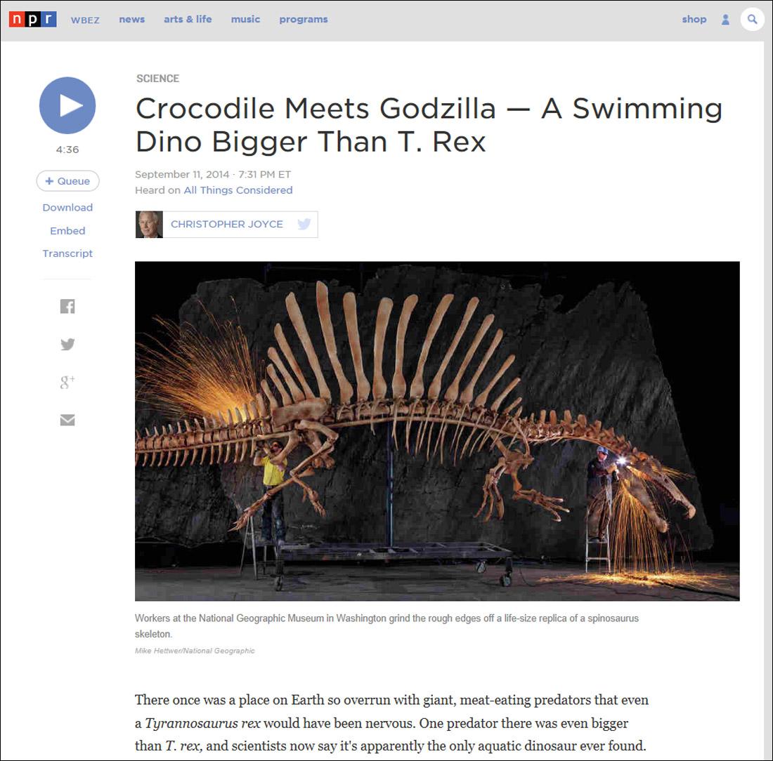 TS-Spinosaur-Dinosaur-Morocco---2016
