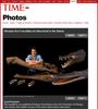 Time-Magazine---Rapto-Rex-Dinosaur--Hettwer