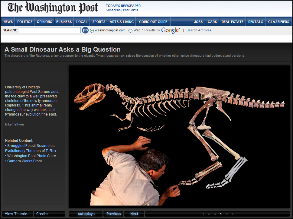 Washington-Post-Raptor-Rex---2016