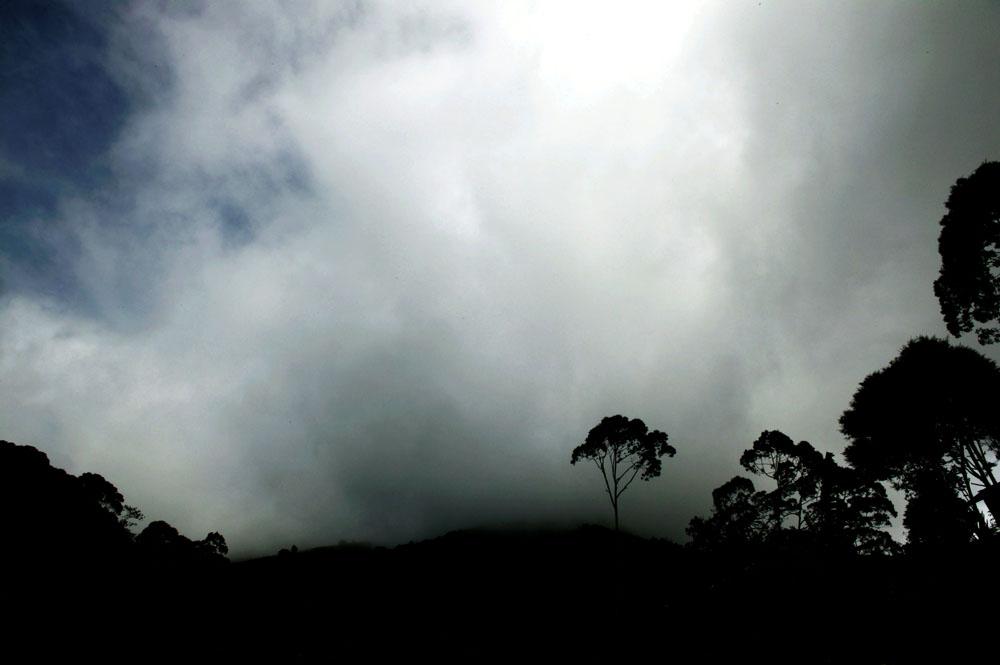 Papua, ( West) , 2007