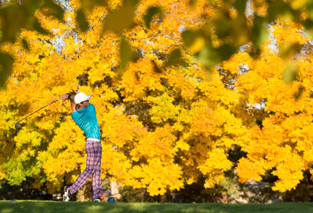Golfing - Illinois
