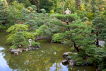 Tim Gruner - Head gardener at Anderson Japanese Garden.