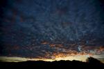Dawn-101917