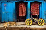 2009_Nepal_019