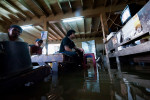 2011_adragaj_Thai_floods_010