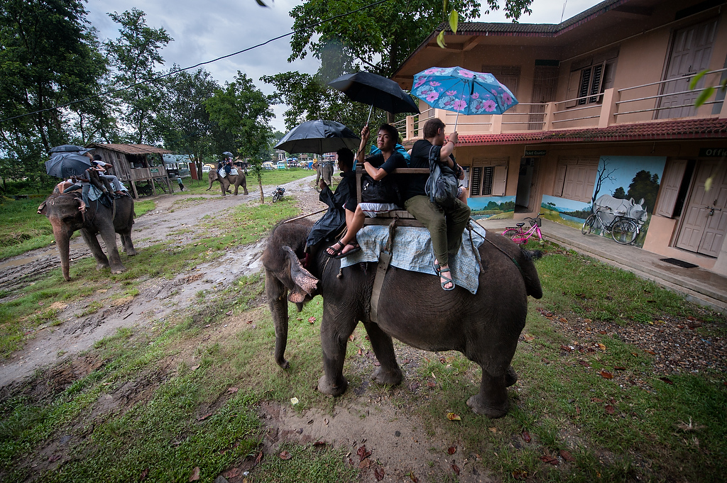 Tourists reach the end of the tour through Chitwan National park.