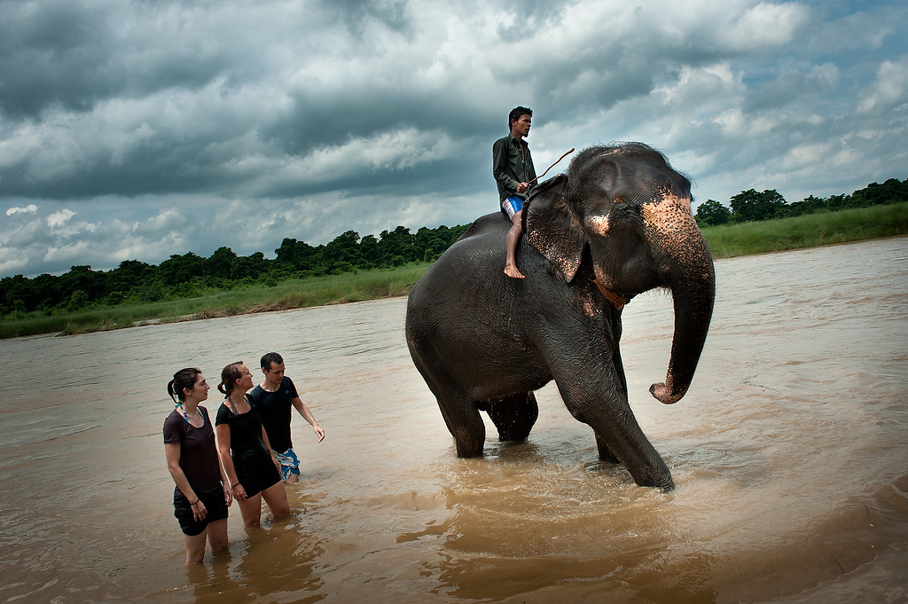 Foreign tourists watch the mahout guide his elephant out of river as the elephant finished bathing. Tourists are charged few dollars to be able to bath the elephant. Approximatelly 200,000 visit Chitwan National park every year boosting the local economy.