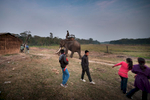 Local tourist leave Hattisar Soura elephant stable as the last elephant returns to the compound.
