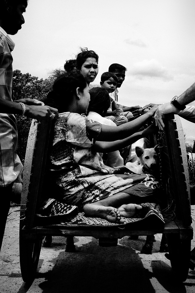 Internally Displaced family upon arrival from Sampur at the camp in Punniyaddi, Trincomalee.