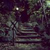 Stone Stairway, RambleCentral Park, New York 2011