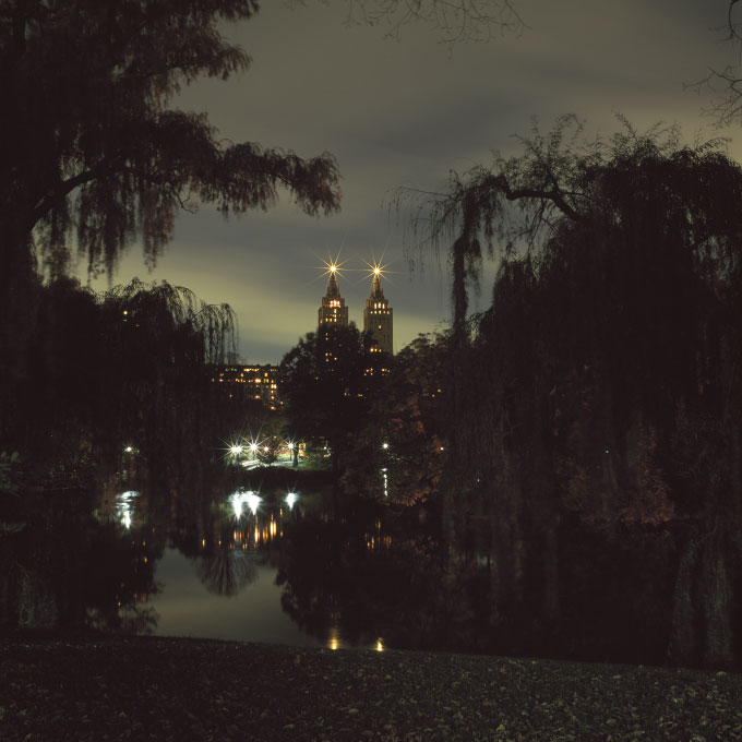 San Remo Through the WillowsCentral Park, New York 2011