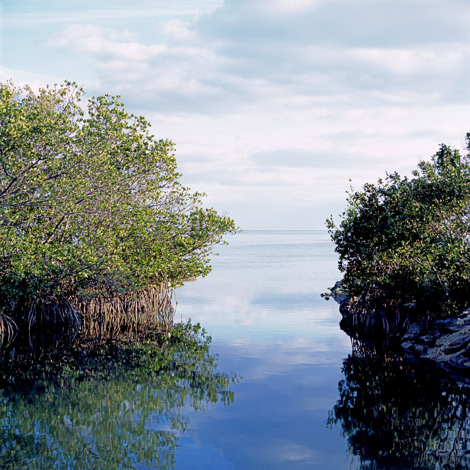 <i>Narrow Passage</i>Islamorada, Florida 2006