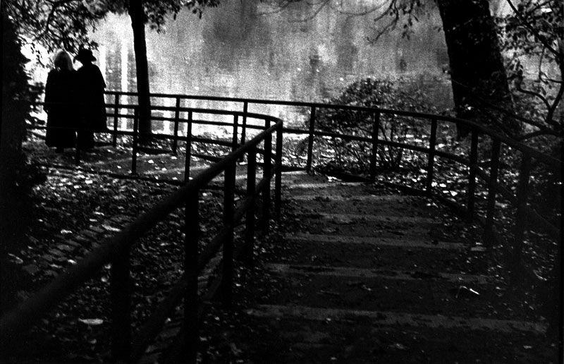 Autumn Walk, Homage to Stieglitz, Central Park, New York NY 1994