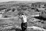 A woman collects sticks in front of the Syrian border in the town of Hacipasa, Turkey. March 2012.