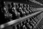 021107_1000_Buddha_KS_004