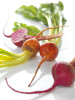 yellow_red_beetroot_0031