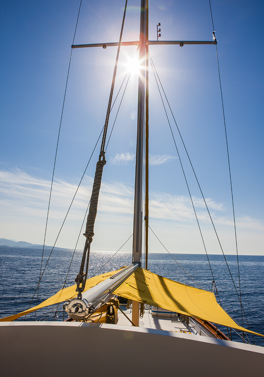 yellow_sail