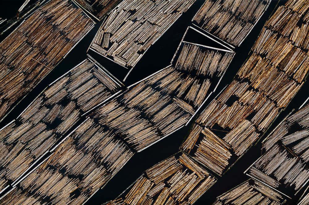 Logging Raft, Olympia, WA 2005 (050628-0029)